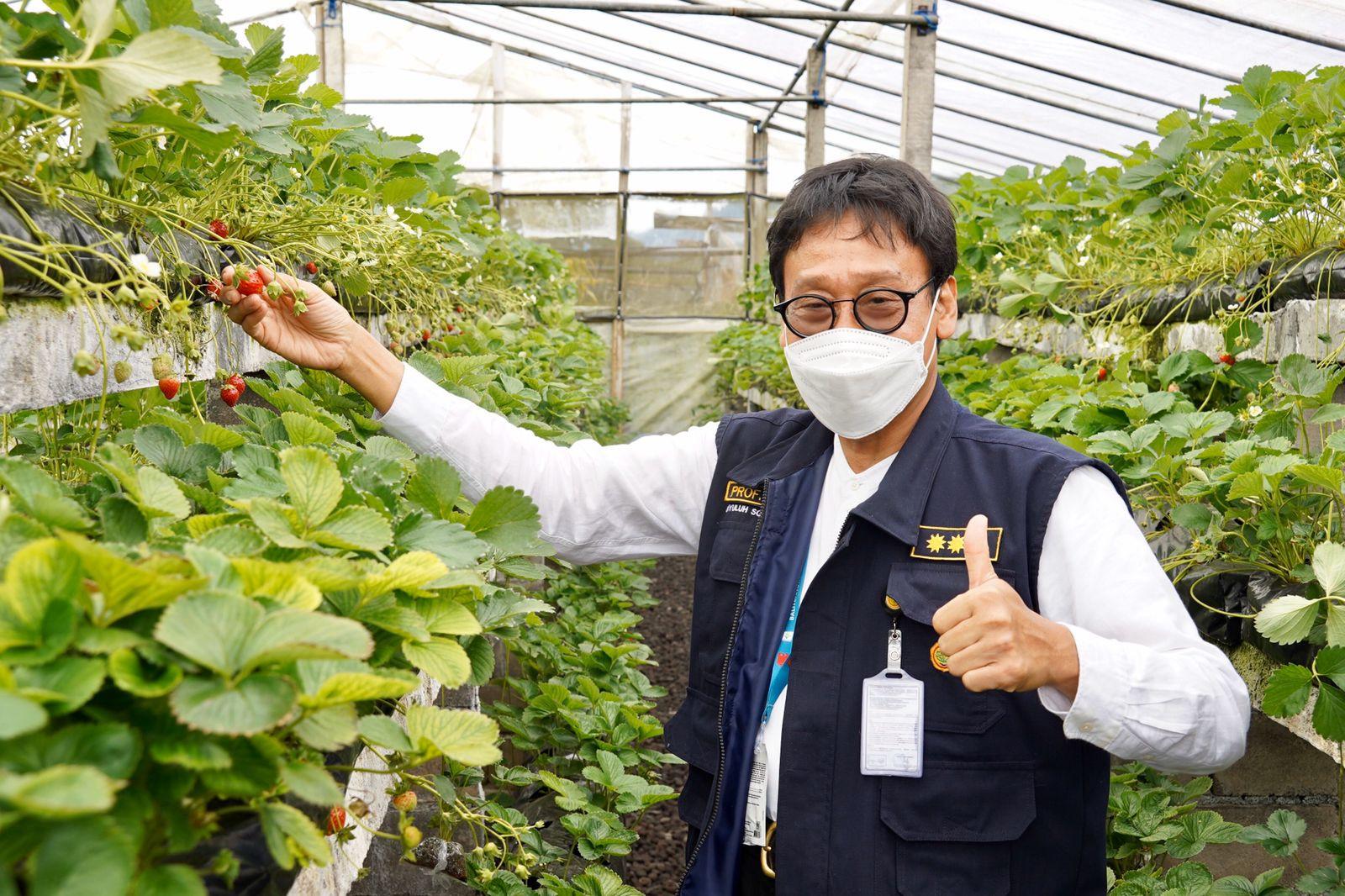 Hebat! Petani Milenial Gobleg Bali Sukses Padukan Pertanian Organik dan Smart Farming - JPNN.com