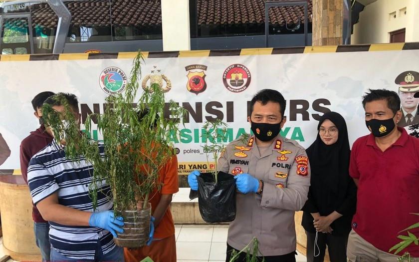 Selama 7 Hari Polisi Menyamar jadi Tukang Rumput, Perbuatan Terlarang Iwan Terbongkar - JPNN.com