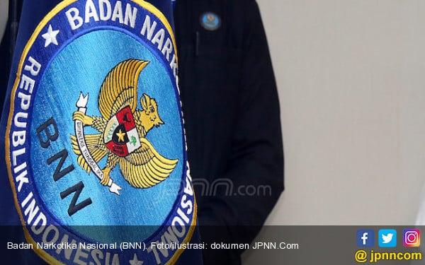 BNNP Bakal Periksa Kakanwil Kemenkumham Lampung - JPNN.COM
