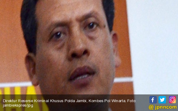 Polda Jambi Telusuri Asal 115 Kubik Kayu Ilegal - JPNN.com