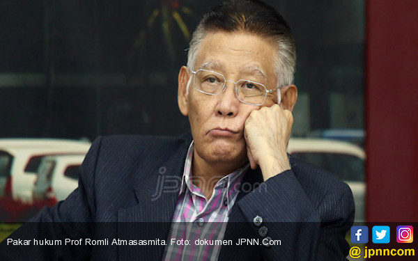Buat yang Tak Puas Sama Vonis Penyerang Novel Baswedan, Simak Nih Kata Prof Romli - JPNN.com