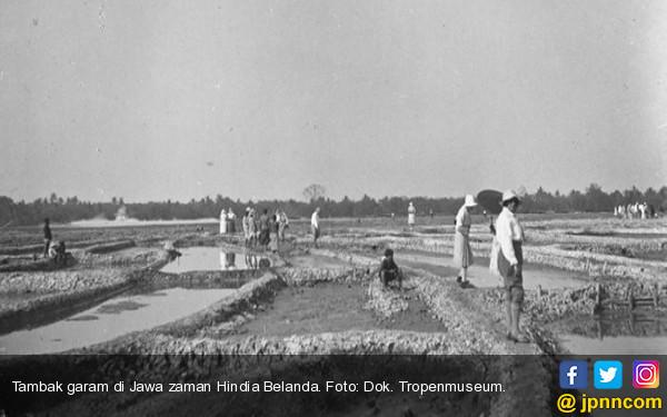 Sejarah Garam dalam Legenda Aji Saka - JPNN.COM