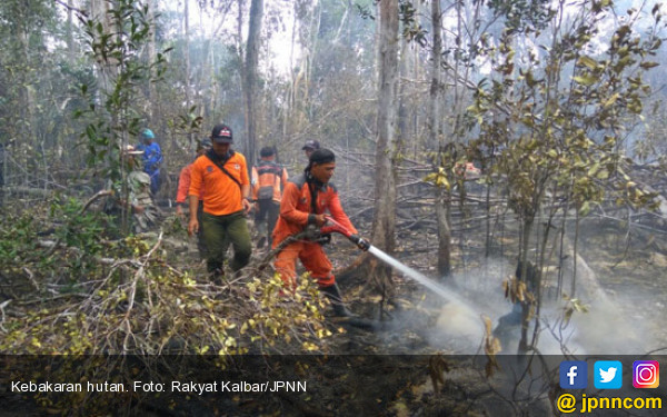 Kebakaran Hutan Meluas, Helikopter Pembom Air Dikerahkan - JPNN.COM
