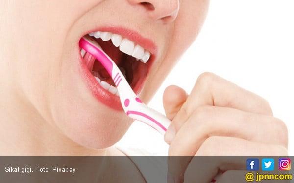 Bagian Gigi Ini Sering Lupa Disikat - JPNN.COM