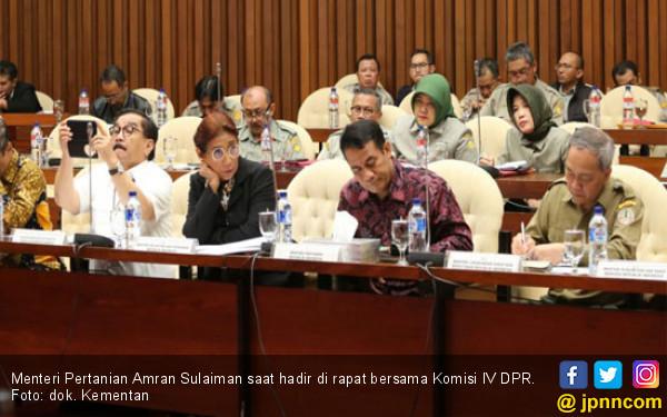 Tembus Ekspor, Komisi IV DPR Apresiasi Capaian Kementan - JPNN.COM