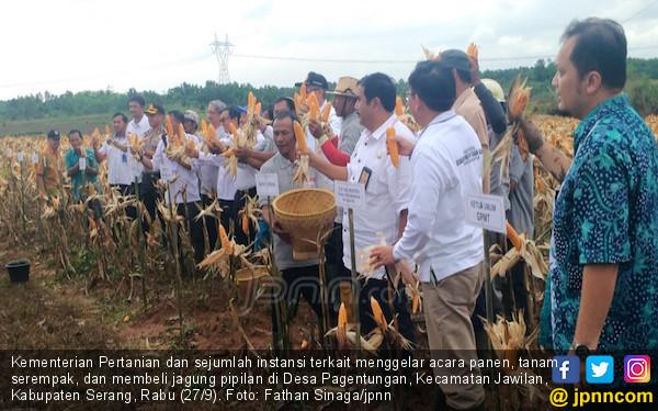 Petani Serang Minta Difasilitasi Produksi Pangan - JPNN.COM
