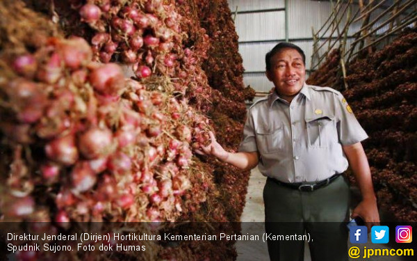 Upaya Kementan Wujudkan Swasembada Bawang Merah - JPNN.COM