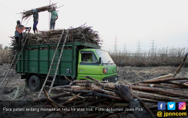Dorong Realisasi Pembangunan Pabrik Gula Terbesar di Sultra - JPNN.COM