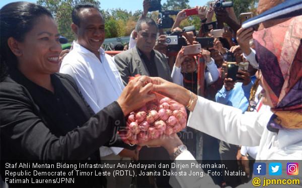 Di 0 Kilometer, Kementan Ekspor Bawang Merah ke Timor Leste - JPNN.COM