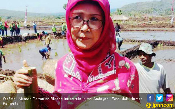 Bawang Merah Pembuka Pintu Ekspor Indonesia ke Timor Leste - JPNN.COM