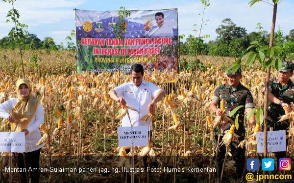 Luas Lahan Pertanian Produktif Bertambah di Era Amran - JPNN.COM