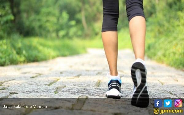 Haruskan Jalan Kaki 10 Ribu Langkah Setiap Hari? - JPNN.com