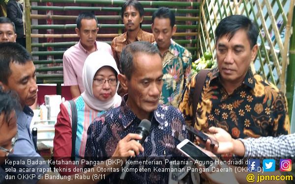 BKP Akan Memperkuat Keamanan Pangan Indonesia Lewat OKKP - JPNN.COM