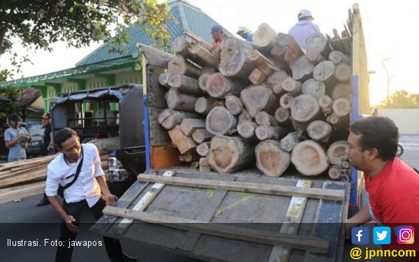 Polres Dharmasraya Tangkap Tiga Truk Pembawa Kayu Ilegal - JPNN.com