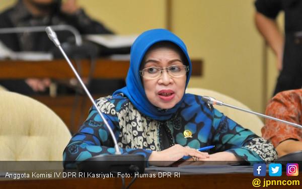 Anggota DPR Kasriyah: Beras Krayan Hanya Ada di Nunukan - JPNN.COM
