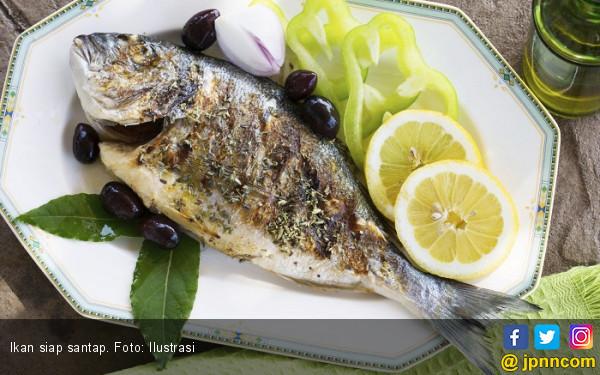 Ketahui 6 Manfaat Makan Ikan untuk Kesehatan  - JPNN.COM