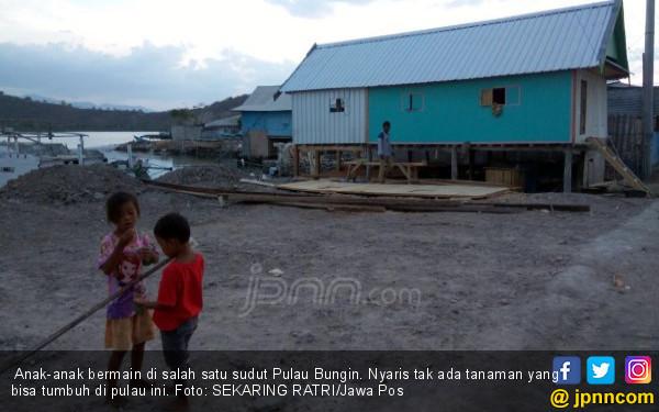 Di Pulau Ini Kambing Makan Kertas, Plastik, Uang, Juga SK - JPNN.COM