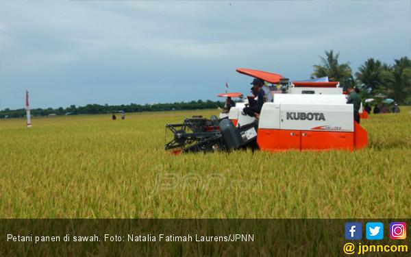 4 Hal Penting untuk Bangkitkan Sektor Pertanian - JPNN.COM