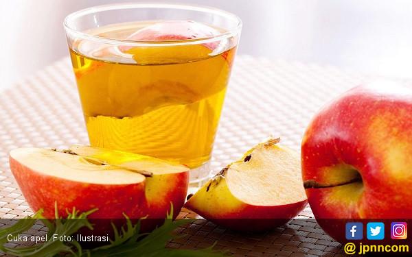 5 Minuman Detoks Terbaik untuk Kesehatan Anda - JPNN.com