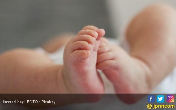 Dua Jam Setelah Dilahirkan, Bayi Dibuang - JPNN.COM