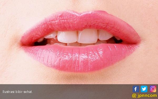 Bibir Lembut dan Sehat dengan Bahan Alami - JPNN.COM