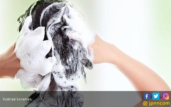 Lakukan Hal Ini Agar Rambut Anda Semakin Indah - JPNN.COM