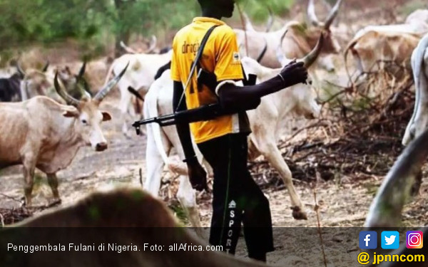 Gembala Vs Petani di Nigeria: 83 Nyawa Melayang - JPNN.COM