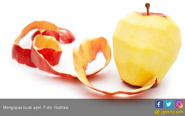 Jangan Kupas Kulit Apel Saat Ingin Dimakan! Ini Alasannya - JPNN.COM