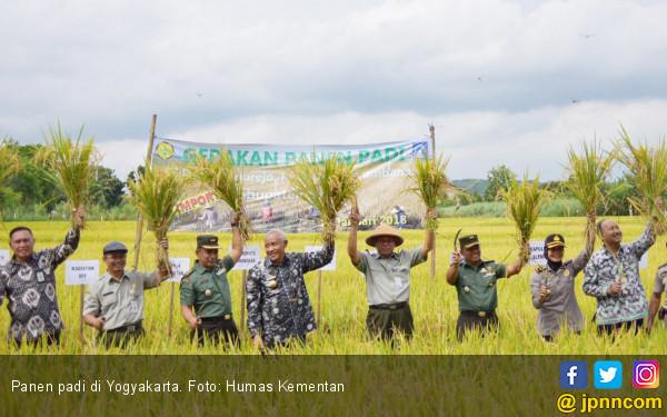 Yogyakarta Dipastikan Akan Panen Padi Setiap Hari - JPNN.COM