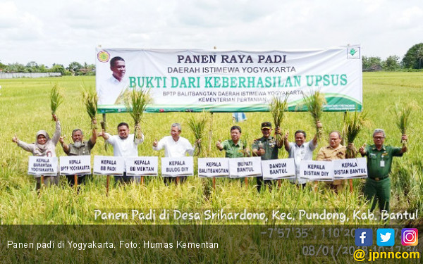 Tiada Hari Tanpa Panen di Yogyakarta - JPNN.COM