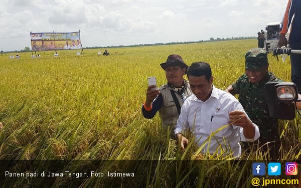 Tim Sergab Targetkan Beli 4,4 Juta Ton Gabah Petani - JPNN.COM