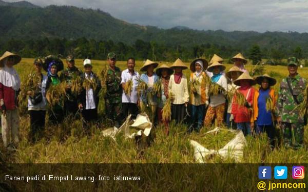 Petani Empat Lawang Mulai Panen Raya Padi - JPNN.com