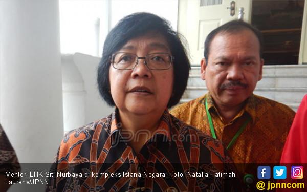 Menteri Siti Awasi Ketat Riau, Sumsel dan Jambi - JPNN.COM