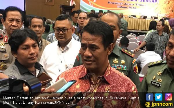 Padi Terendam Banjir, Mentan: Ada Asuransi Pertanian - JPNN.COM