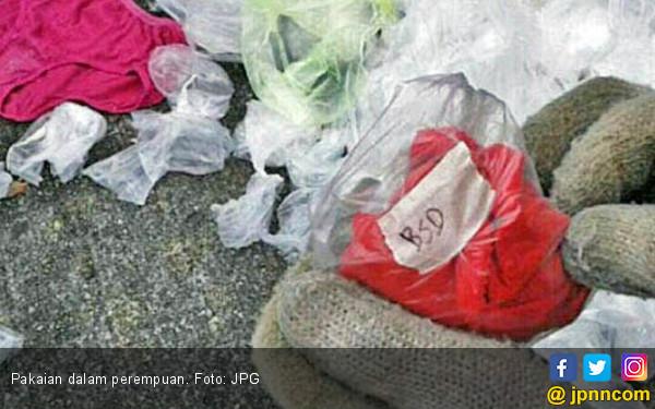 Aduh, Mahasiswa Kok Nekat Curi Celana Dalam Cewek - JPNN.COM