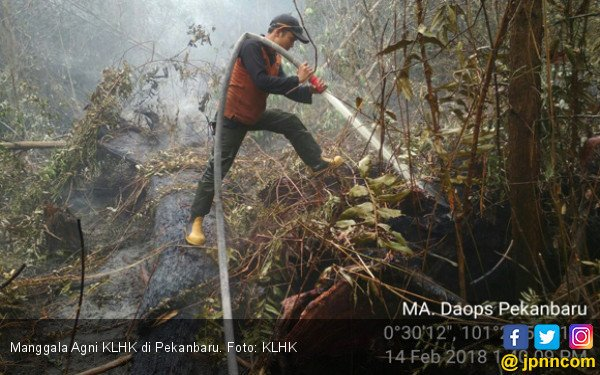 KLHK Padamkan Karhutla di Sumatera dari Darat dan Udara - JPNN.COM
