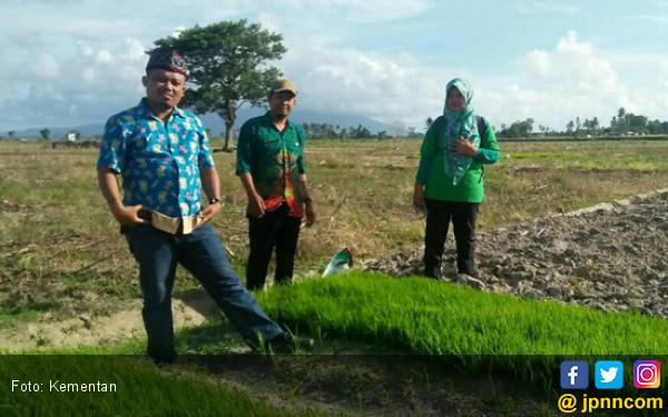 Petani Lampung Selatan Terapkan Sistem Unik - JPNN.COM