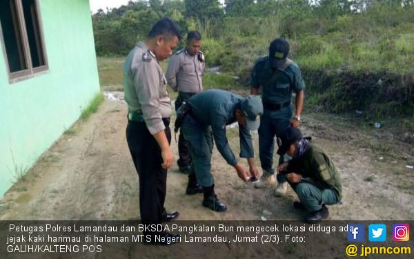 Misteri Jejak Kaki di Sekitar Gedung MTS Negeri Lamandau - JPNN.COM