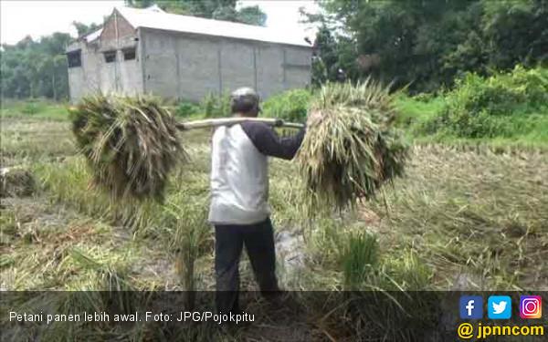 Jadi Ketua HKTI Gorontalo, Ini Janji Nelson Pomalingo - JPNN.COM