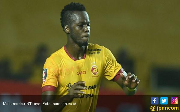 Dua Pemain Inti Sriwijaya FC Sangat Diminati Bali United - JPNN.COM