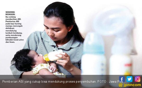 Pemberian ASI Dukung Kesembuhan Bayi Kuning - JPNN.COM