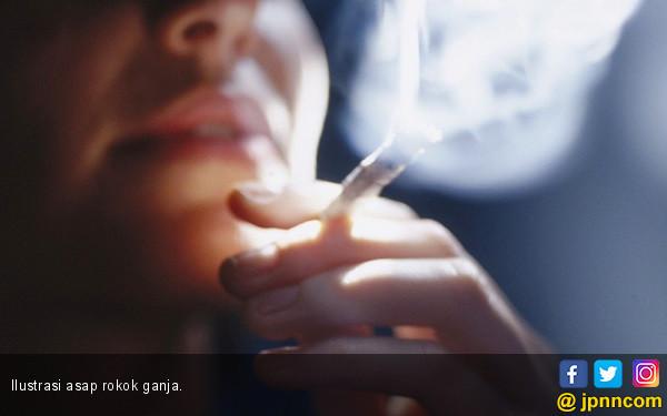 Merokok Picu Tekanan Darah Tinggi - JPNN.COM