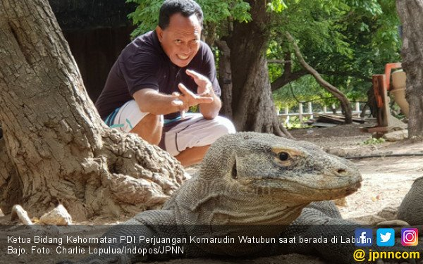 Komarudin Watubun: Cabut Investasi Berisiko di Pulau Komodo - JPNN.COM