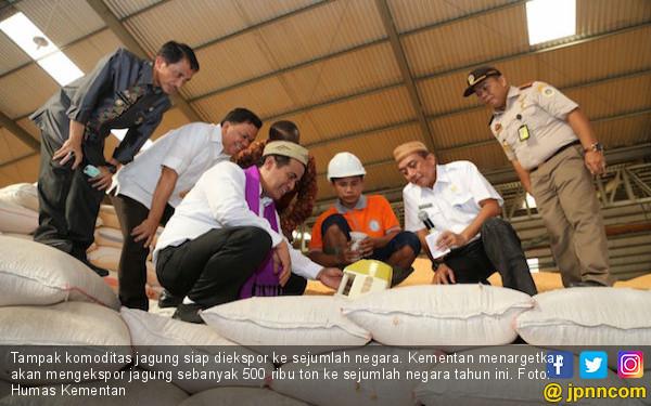 2018, Indonesia Akan Ekspor Jagung Komposit 500 Ribu Ton - JPNN.COM