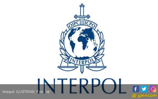 Interpol Punya Presiden Baru, Namanya Kim Jong - JPNN.COM