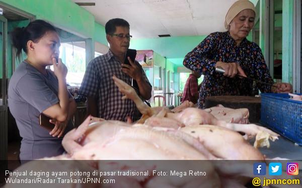Alhamdulillah, Jelang Ramadan Harga Ayam Stabil - JPNN.com