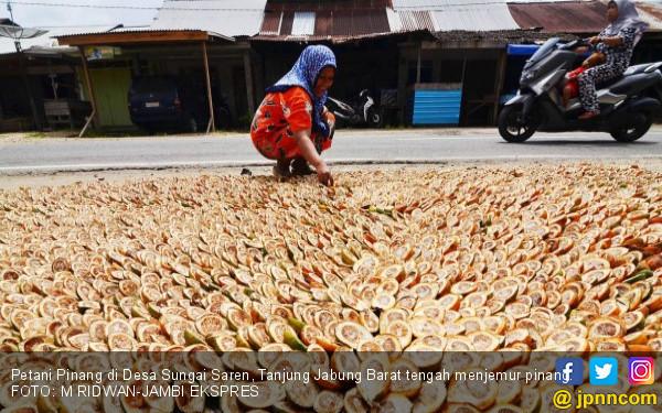 Harga Pinang Turun Jelang Lebaran, Petani Sedih - JPNN.COM