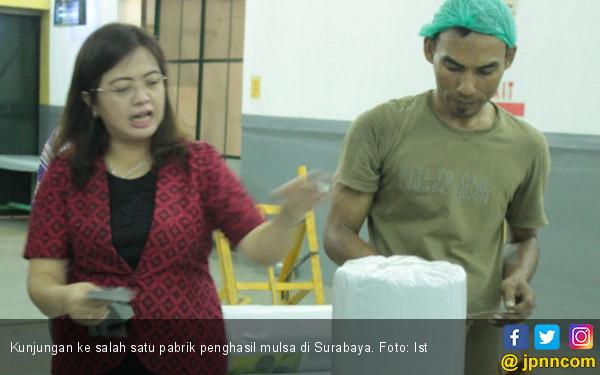 Pemanfaatan Plastik Mulsa Bagi Hortikultura - JPNN.COM