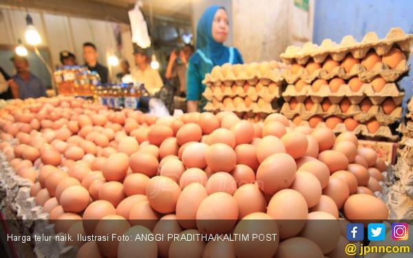 Harga Telur Naik Disebut karena Banyak Warga Hajatan - JPNN.COM