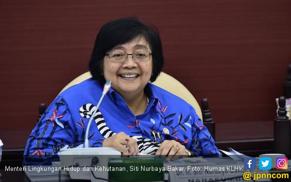 Saham Freeport Dikuasai Indonesia, Lingkungan Makin Terjaga - JPNN.COM